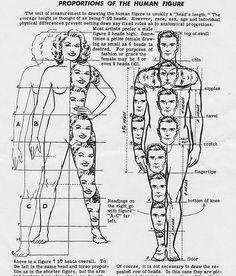 Idea apologise, female erogenous zones diagram duly answer
