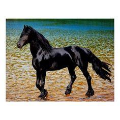 Friesian horse at the lake poster print