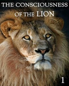 The Consciousness of the Lion - Part 1 Virgo Women, Aquarius Men, Animal Consciousness, Cherish Life, Here On Earth, Close Encounters, Why Do People, Animal Kingdom, Egyptian