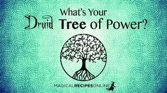 The Celtic Astrology and the Druid Zodiac Sign. What's yours? Find out which Tree is your Patron based on the day of birth