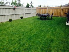 We take pride in our work. Lawn care perfection!
