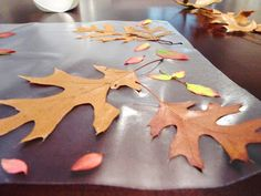 Candace Creations: Autumn Placemat - Crafts with Kids