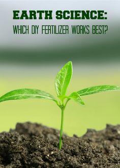 Earth Science for Kids: Testing DIY Ferttilizers