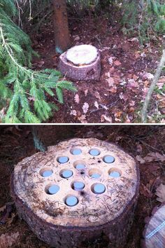 Oh no, the film canisters in the woods are multiplying! Although this looks like a nice idea to make a film pot #geocache in the woods more fun. Now which has the log? (pics from Schmelli Online, stitched together by @ibgeocaching) #IBGCp