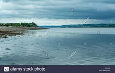 Download this stock image: Shoreline along the Menai Strait on Anglesey - G5Y430 from Alamy's library of millions of high resolution stock photos, illustrations and vectors.