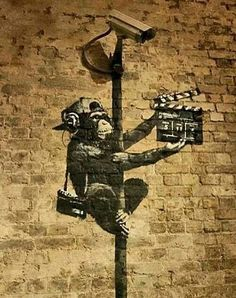 Banksy canvas Monkey Director Street Art Grafitti 16 x 20 inch premium print - Street Art Banksy, 3d Street Art, Banksy Art, Urban Street Art, Best Street Art, Amazing Street Art, Street Artists, Bansky, Pop Art