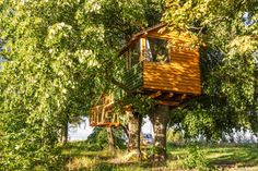 The Owl Treehouse. A beautiful cabin cozily... – Tree House Love