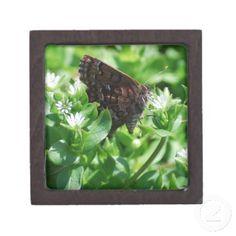 Columbine Duskywing Skipper Butterfly box Premium Trinket Boxes