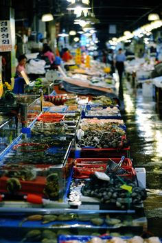 Noryangjin Fish Market in Seoul, Korea