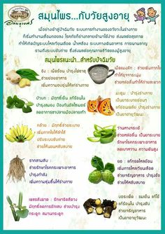สุขภ Healthy Beauty, Healthy Tips, Healthy Habits, Healthy Recipes, Health Eating, Health Diet, Health Fitness, Herbal Remedies, Health Remedies