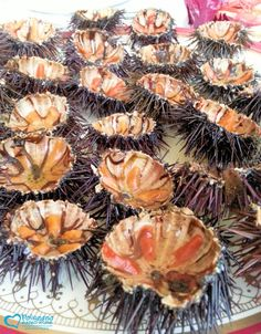 Sea urchins  http://www.polignanomadeinlove.com  #polignanomadeinlove #ilovepolignanoamare #vieniamangiareinpuglia #madeinitaly #WeAreInPuglia #polignanolovers