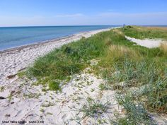 Beach, Skanor, Falsterbo, Sweden