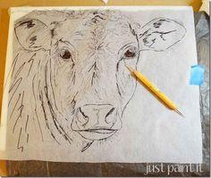 transfer-cow-sketch