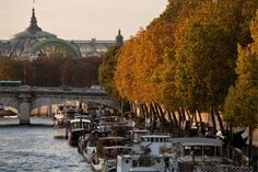 Quai des Tuileries is on the Right Bank of the River Seine in Paris, in the 1st arrondissement.