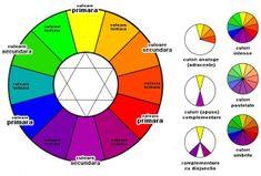 teoria culorilor in machiaj 2