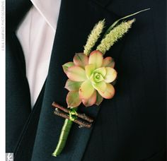 The groom's unique boutonniere was made of a mini succulent bloom with millet and grapevine.