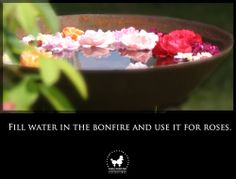 Fill water in the bonfire and use it for roses.