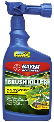 Bayer Advanced 704645 Ready-to-Spray Brush Killer Plus, 32-Ounce *** You can find more details here : Gardening DIY