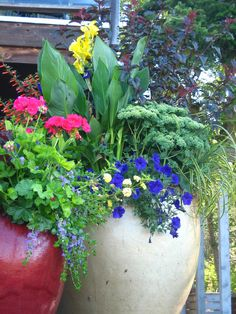 Groupings of pots of different sizes and colors can form a delightful space.