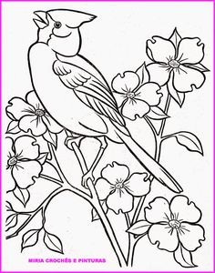 Mockingbird And Magnolia Mississippi State Bird Flower Coloring