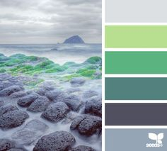 greens and grey