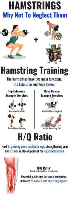 The squat is a great staple exercise, but it is mostly quad dominant. Targeted hamstring work is generally necessary for developing your hamstrings. Next to the fact that developed hamstrings makes. Hamstring Exercises For Women, Quad Exercises, Hamstring Workout, Glute, Fitness Exercises, Gym Workout Chart, Hip Workout, Exercise Chart, Workout Plans