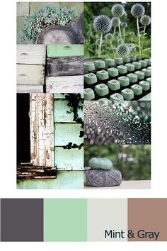 Grey and Mint Green. Design a custom dog collar in these fab colors at www.ifitbarks.com!