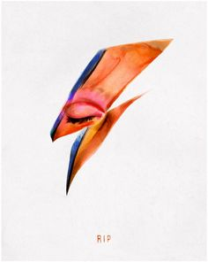Von's illustrations is based on the lightning bolt from Bowie's Aladdin Sane album cover