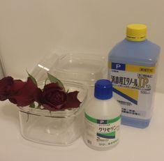 グリセリンを使ったプリザーブドフラワーの作り方 | 得する生活の知恵 Craft Work, Spray Bottle, Cleaning Supplies, Diy And Crafts, Candles, Handmade, Flower, Green, Ideas