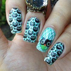$2.09 Cute Owls Nail Art Stamping Template Image Plate BORN PRETTY BP54 - BornPrettyStore.com