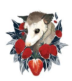 Strawberry Opossum by Alison Polston Art Print by Opossum, My Possum | Society6