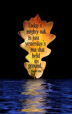 Today's mighty oak is just yesterday's nut that held its ground. ~ David Icke