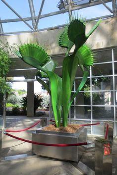 Venus flytrap dionaea sculpture Savage Gardens exhibit carnivorous plants San Antonio Botanical Garden Texas