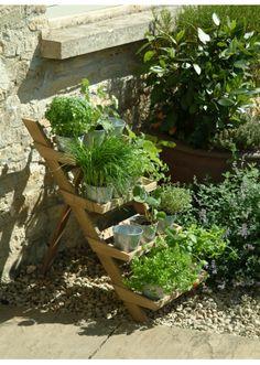 four-tier planter ladder
