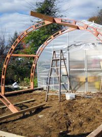 4 Easy Steps to Set-Up Your Own Backyard Aquaponics System - Tools And Tricks Club Aquaponics Greenhouse, Build A Greenhouse, Aquaponics System, Hydroponics, Aquaponics Plants, Greenhouse Ideas, Greenhouse Heaters, Polycarbonate Greenhouse, Winter Greenhouse