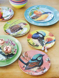 Birds on melamine plates!