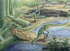 The #Coelophysis (scientific name C. Bauri); a short, slender, flesh-eating dinosaur was a #bipedal (i.e. it used to walk on two legs) #theropod that lived approximately 203-196 million years ago.
