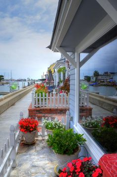 ✮ Balboa Island Beach House - Newport Beach, CA Where's Lucille? Or a loose seal?