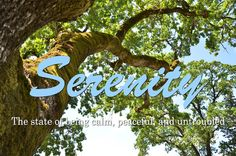Serenity: The state of being calm, peaceful, and untroubled