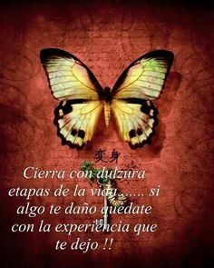 Cerrando ciclos Motivational Picture Quotes, Inspirational Quotes For Women, Motivational Phrases, Wise Quotes, Faith Quotes, Words Quotes, Sayings, Qoutes, Treasure Quotes