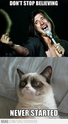 I love grumpy cat - Don't stop believing