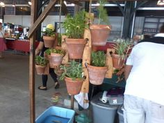 This is a large set display to show you how you can grow a hanging herb garden.