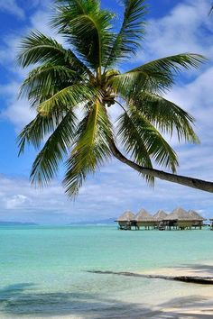 The hotel comprises Polynesian-styled bungalows with all mod cons and knockout views. InterContinental Le Moana Resort Bora Bora (Bora Bora, French Polynesia) - Jetsetter