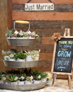 Wedding favors are small gifts given as a gesture of appreciation or gratitude to guests from the bride and groom during a wedding ceremony or a wedding reception.The tradition of distributing wedding favors is a very old one. Succulent Wedding Favors, Rustic Wedding Favors, Bridal Shower Rustic, Bridal Shower Favors, Chic Wedding, Wedding Decorations, Wedding Ideas, Wedding Reception, Rustic Wedding Showers