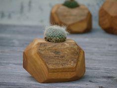 Rustic Cactus Pot - Indoor Plant Holder - Reclaimed Wood Planter