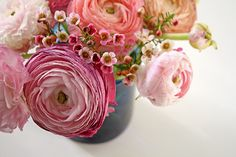Ok its official.. I have a new favourite flower (for this month at least) It's the ranunculus (Ranunculus asiaticus) Oh gosh! What a delightful bloom! I could just look at these gorgeousflowers a…
