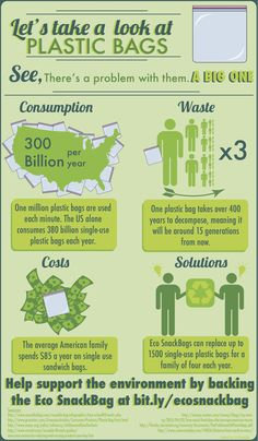 The truth about plastic bag waste + what YOU can do to stop the 300 billion bags from being thrown away this year in the US