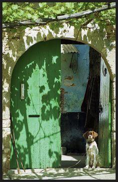 Love this dog guarding the Fwesh green door! Antique Doors, Old Doors, Windows And Doors, Dappled Light, Door Gate, Door Knockers, Light And Shadow, Doorway, Stairways