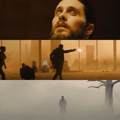 Cinematic Photography, Film Photography, Movie Color Palette, Color In Film, Denis Villeneuve, Film Theory, Blade Runner 2049, Light Film, Movie Shots