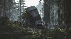 Stillleben auf Endor: Ein zerstörter AT-AT liegt auf dem Waldboden. Der In-Game-Fotograf hat den Moment festgehalten.